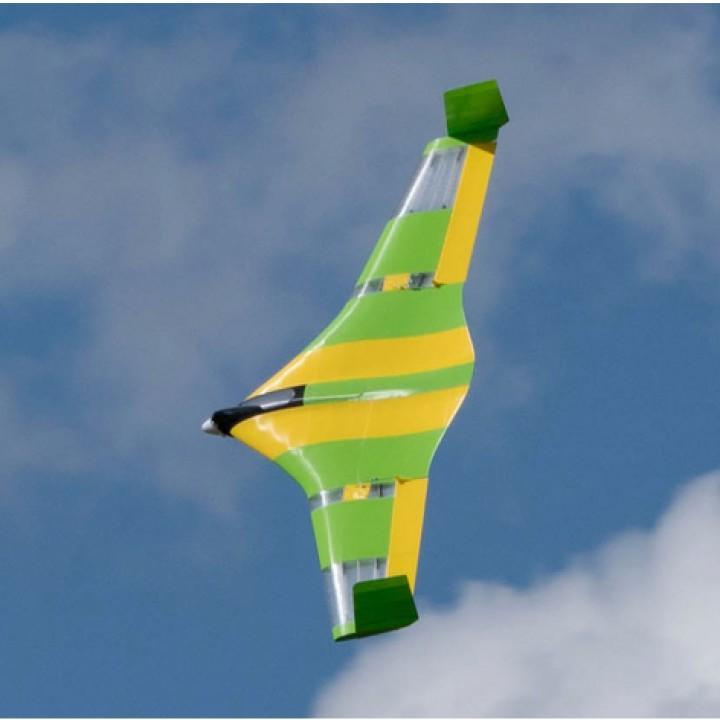 Flying Wing Buratinu