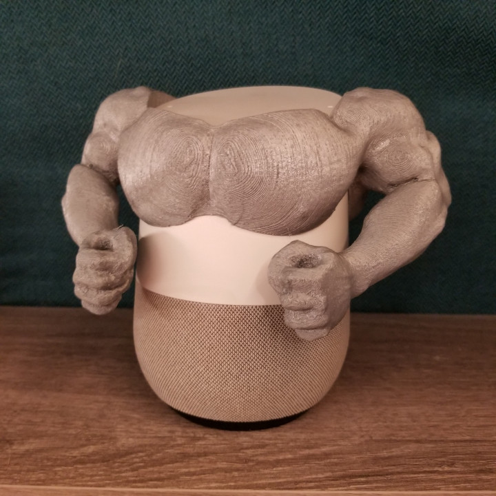 Google Home Muscles